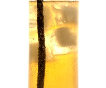 Brief & Bright – Citadelle Gin