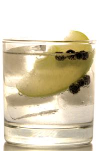 Elephant Gin G&T